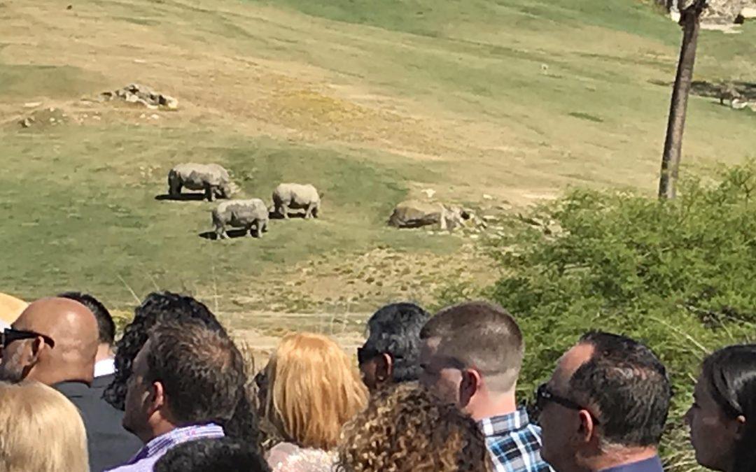 Wild Weddings at the San Diego Zoo-Safari Park
